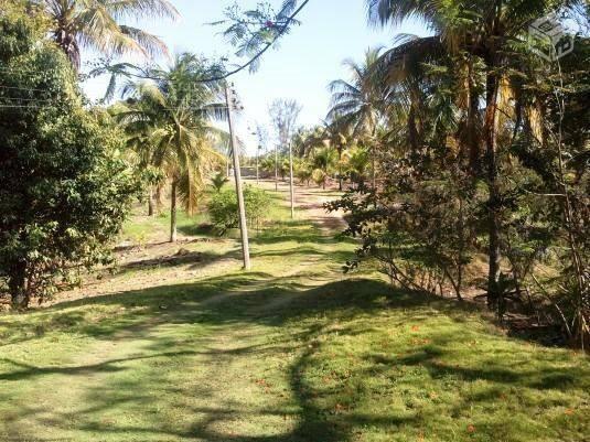 COD-130: Sítio no Jardim - Saquarema - Foto 6