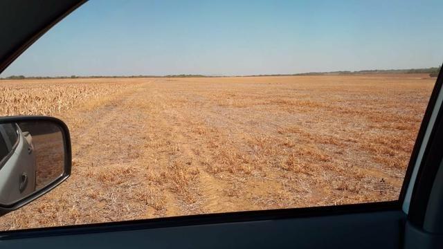 Fazenda de 462 Ha , 300 Ha Lavoura . Redenção - PA .permuta 70% em Fazenda no Paraná - Foto 10