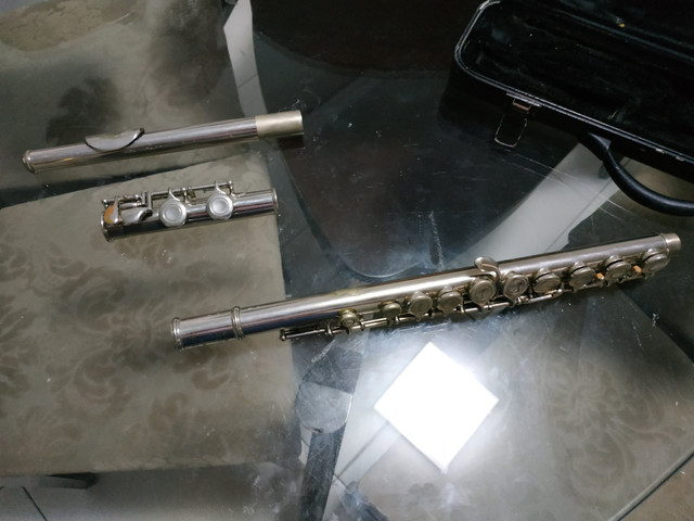 Flauta Transversal - Foto 2
