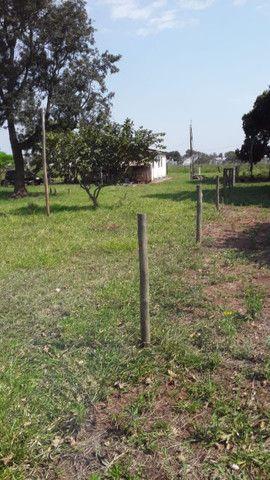 Fazenda em amambaí - Foto 7