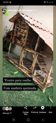 Viveiro para coelhos - Foto 2