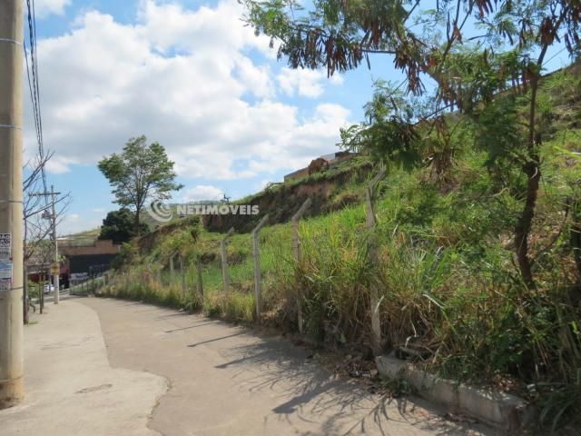 Terreno à venda em Jardim alvorada, Belo horizonte cod:647864 - Foto 5