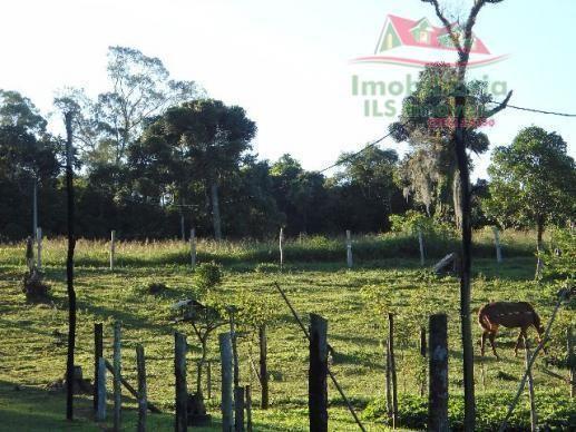Chácara rural à venda, campo largo da roseira, são josé dos pinhais - ch0026. - Foto 8