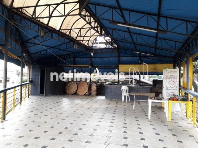 Casa à venda com 2 dormitórios em Padre eustáquio, Belo horizonte cod:389415 - Foto 5