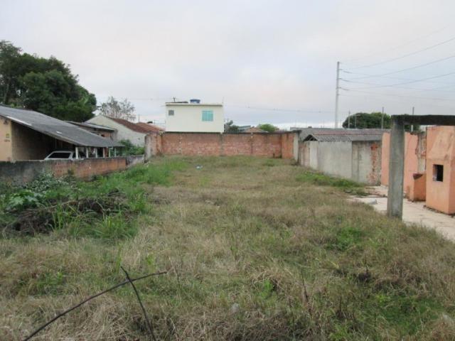 Terreno à venda, 420 m² por r$ 160.000 - rio pequeno - são josé dos pinhais/pr - Foto 2