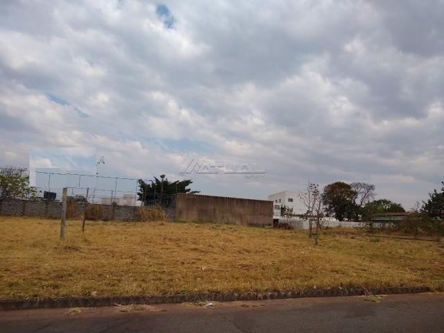 Terreno à venda em Vila rosa, Goiânia cod:302 - Foto 5