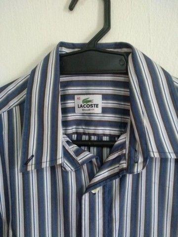 Camisa lacosta original - Foto 4