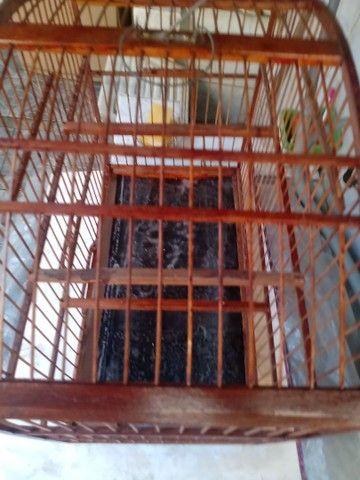 Gaiola de trinca ferro usada em bom estado - Foto 2