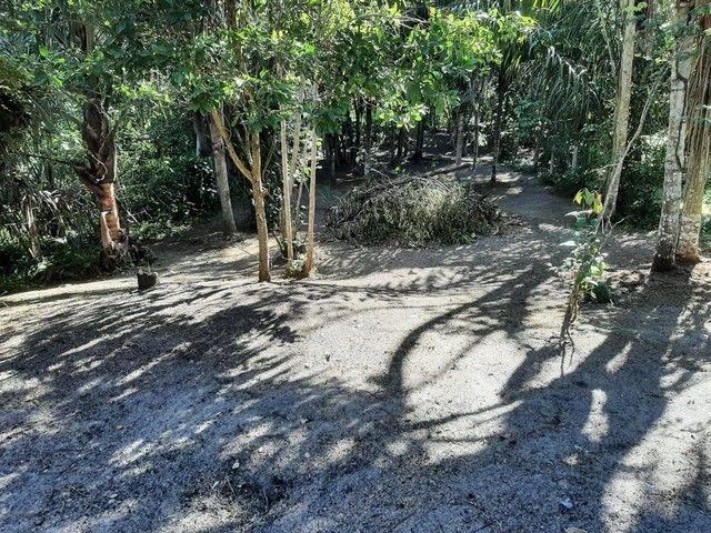 Vendo terreno em Manaus, Amazonas 12x100 - Foto 2