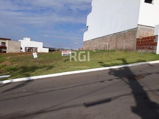 Terreno à venda em Morro santana, Porto alegre cod:MF22186 - Foto 6