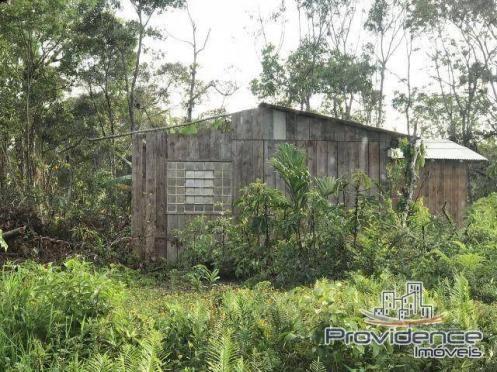 Terreno residencial à venda, coroados, guaratuba. - Foto 7