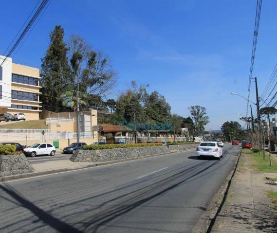 Terreno comercial na avenida manoel ribas - Foto 5