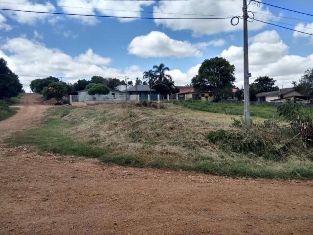 Terreno à venda em Colonia dona luiza, Ponta grossa cod:V2564