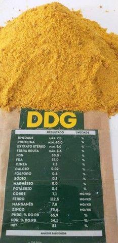 Ddg de milho alta proteína - Foto 4
