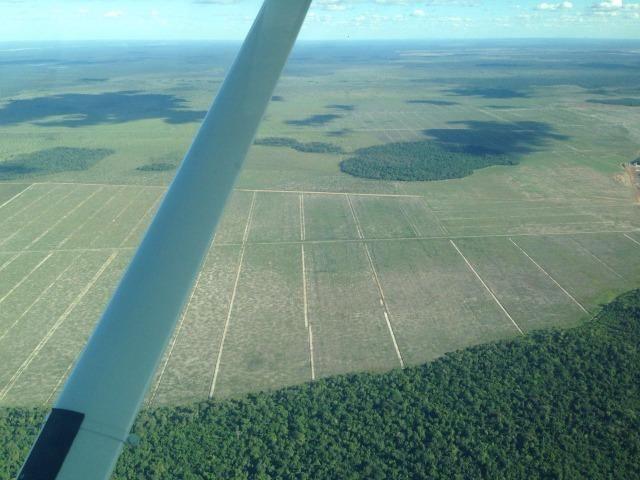 Fazenda 50.000 há (Porteira Fechada) - Foto 5