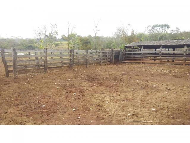 Chácara à venda em Zona rural, Pocone cod:20534 - Foto 6