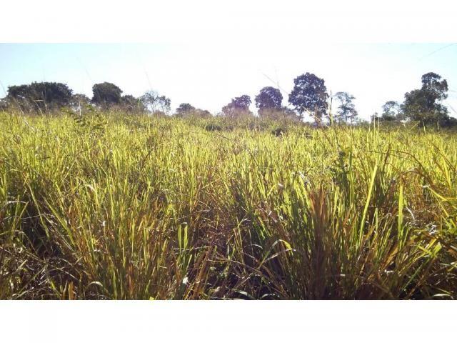 Chácara à venda em Zona rural, Pocone cod:20534 - Foto 19