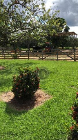 Fazenda 490 ha estrada de cáceres - Foto 6
