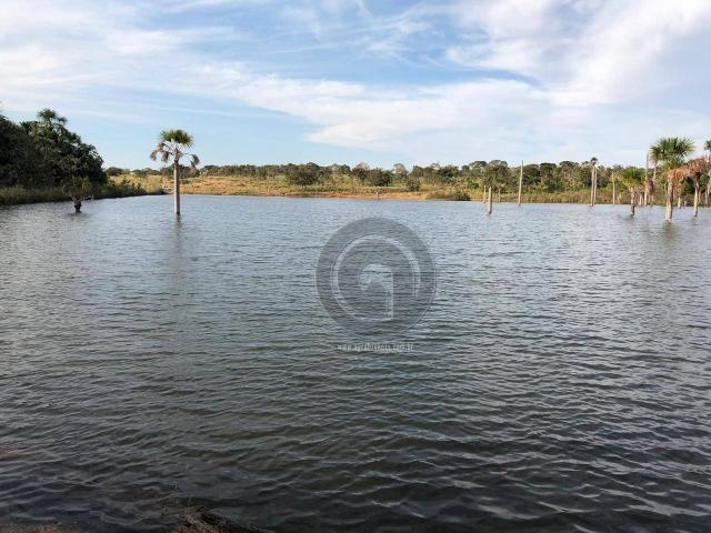 Fazenda 490 ha estrada de cáceres - Foto 7