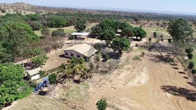 Fazenda 490 ha estrada de cáceres - Foto 19
