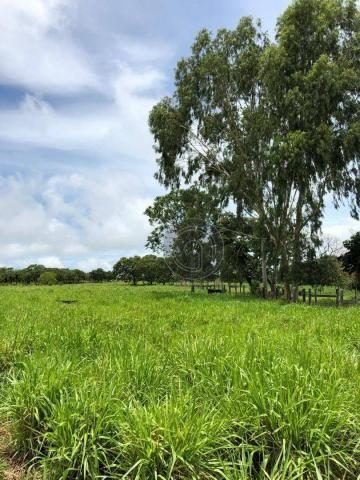 Fazenda 490 ha estrada de cáceres - Foto 2