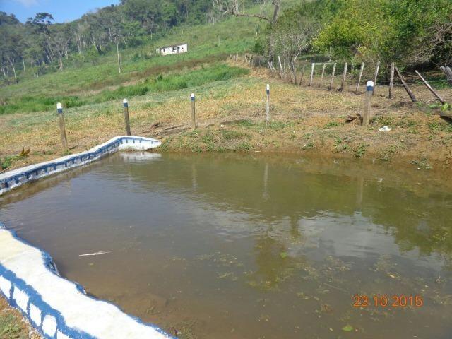 Vende fazenda de Cacau com 278 Ha - Camamu - BA - Foto 10