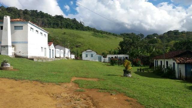 Vende fazenda de Cacau com 278 Ha - Camamu - BA - Foto 3