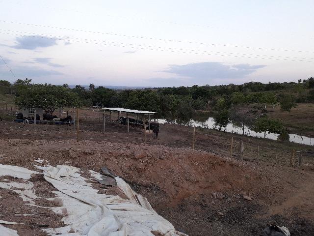Fazenda à venda, por R$ 900.000.00 - Zona Rural - Luziânia/GO - Foto 13