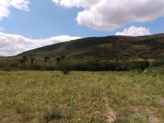 Vendo uma excelente área no bairro da Gameleira da Sede em Campo Formoso / Ba. - Foto 4
