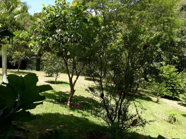 Marechal Floriano - sitio a 6 km da cidada - Foto 10