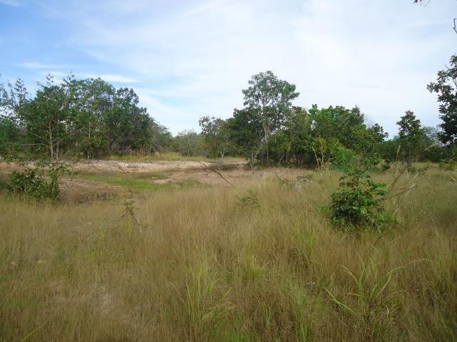 Fazenda em Monte do Carmo-To, 190ha - Foto 11