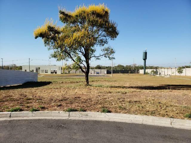 Terreno Florais Itália Cuiabá, 558,00 m², Esquina e em Frente Área Verde - Foto 19