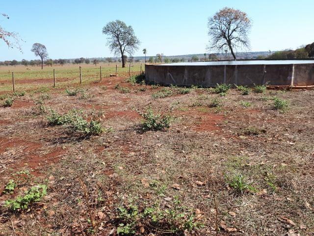 Fazenda em Campo Grande 4mil hectares!! - Foto 12