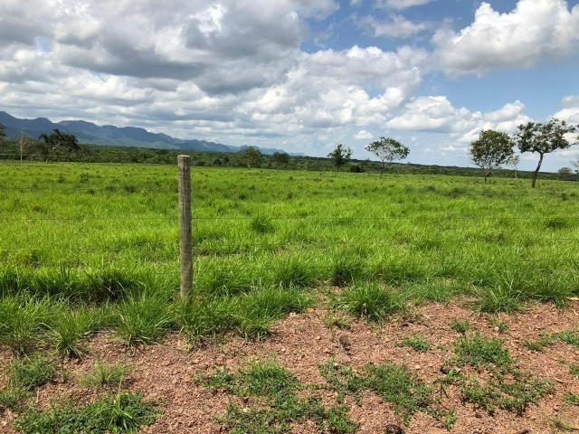 Fazenda 1.163 hectares em Livramento MT