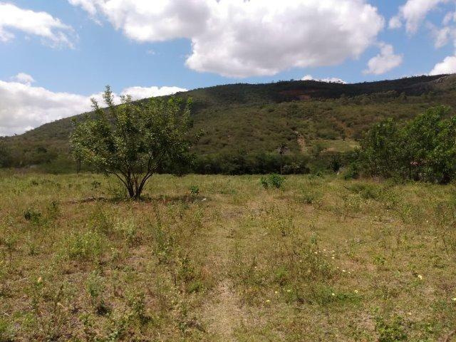 Vendo uma excelente área no bairro da Gameleira da Sede em Campo Formoso / Ba. - Foto 7