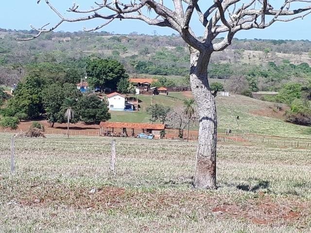 Fazenda em Campo Grande 4mil hectares!! - Foto 9