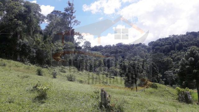 Fazenda de 100 alqueires paulistas, Campina Grande do Sul / PR - Foto 3