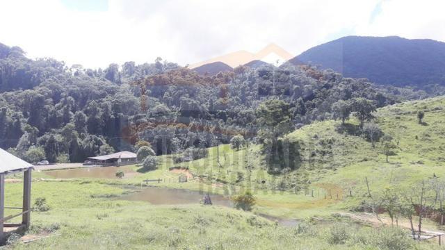 Fazenda de 100 alqueires paulistas, Campina Grande do Sul / PR - Foto 12
