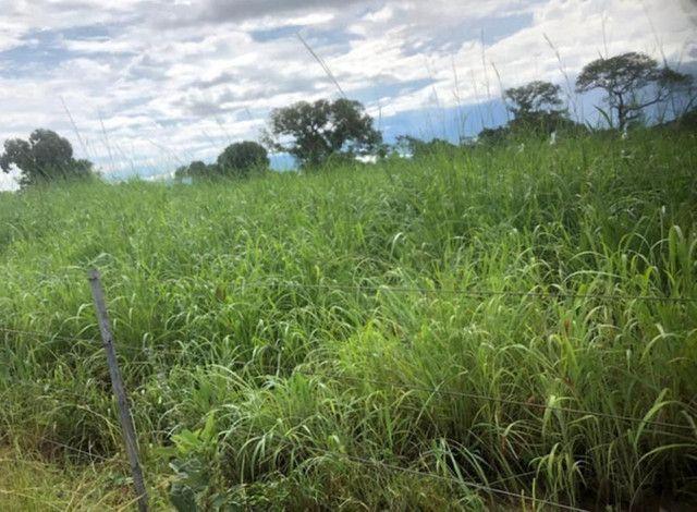 Fazenda na Rodovia BR-324 Candeias (parcelamento no boleto)