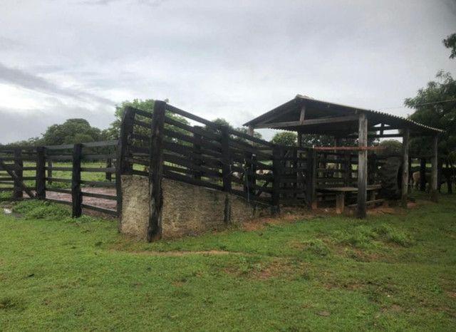 Fazenda na Rodovia BR-324 Candeias (parcelamento no boleto) - Foto 4