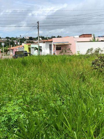 Terreno na Avenida Principal do Plaza Garden - Jardins - São Gonçalo do Amarante - Foto 11