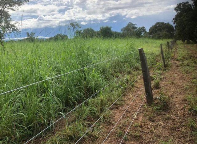 Fazenda na Rodovia BR-324 Candeias (parcelamento no boleto) - Foto 11