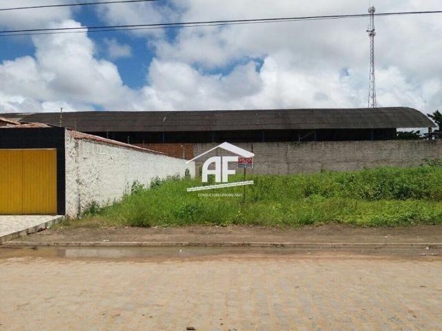 Terreno 15x30 no Loteamento Casa forte, Totalmente nascente - Foto 2
