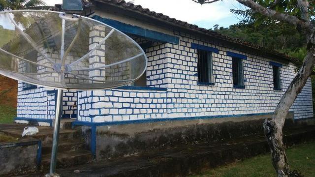 Vende fazenda de Cacau com 278 Ha - Camamu - BA - Foto 12