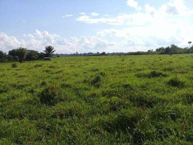 Ótima fazenda med. 3.900 hectares na Br 317 - Foto 2