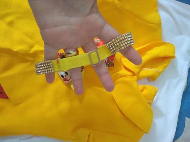 Vestido + tiara da Magali 30.00 tamanho 1 ano