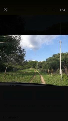 Fazenda no Sul do Piauí
