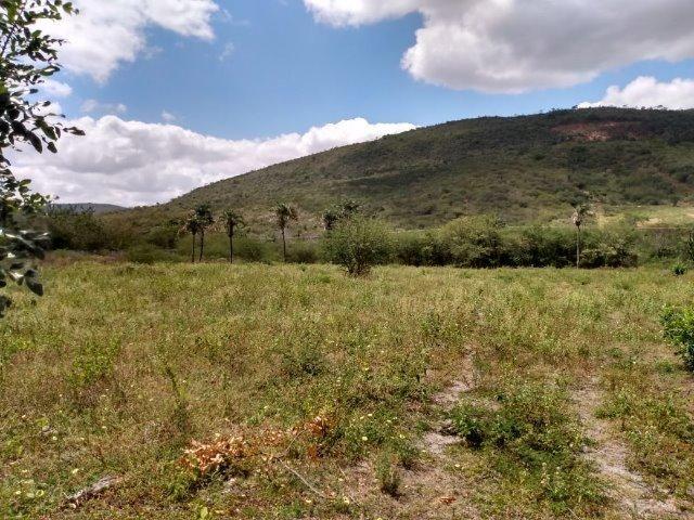 Vendo uma excelente área no bairro da Gameleira da Sede em Campo Formoso / Ba. - Foto 5