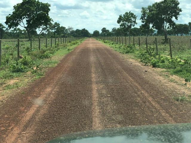 Fazenda 1.163 hectares em Livramento MT - Foto 2