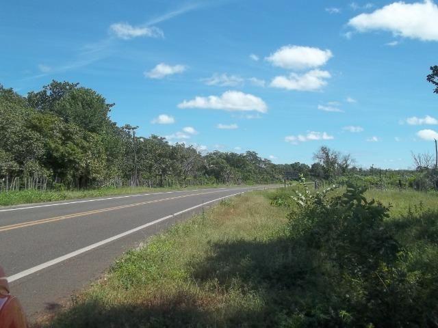 Fazenda as margem da BR 222 a 01 km de Batalha ? PI - Foto 8